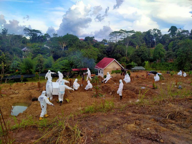Ribuan Burung Pipit Mati Mendadak di Bali, Ini Kata BKSDA